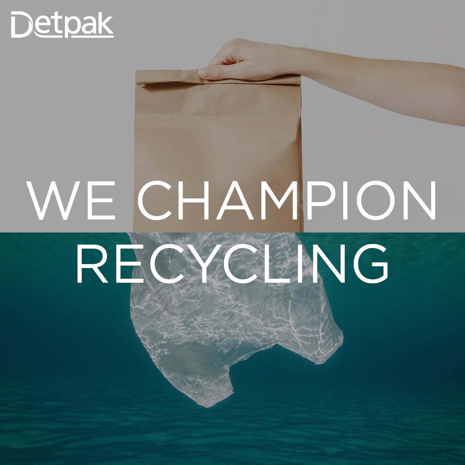 Image of paper bag and plastic bag with text 'We Champion recycling'