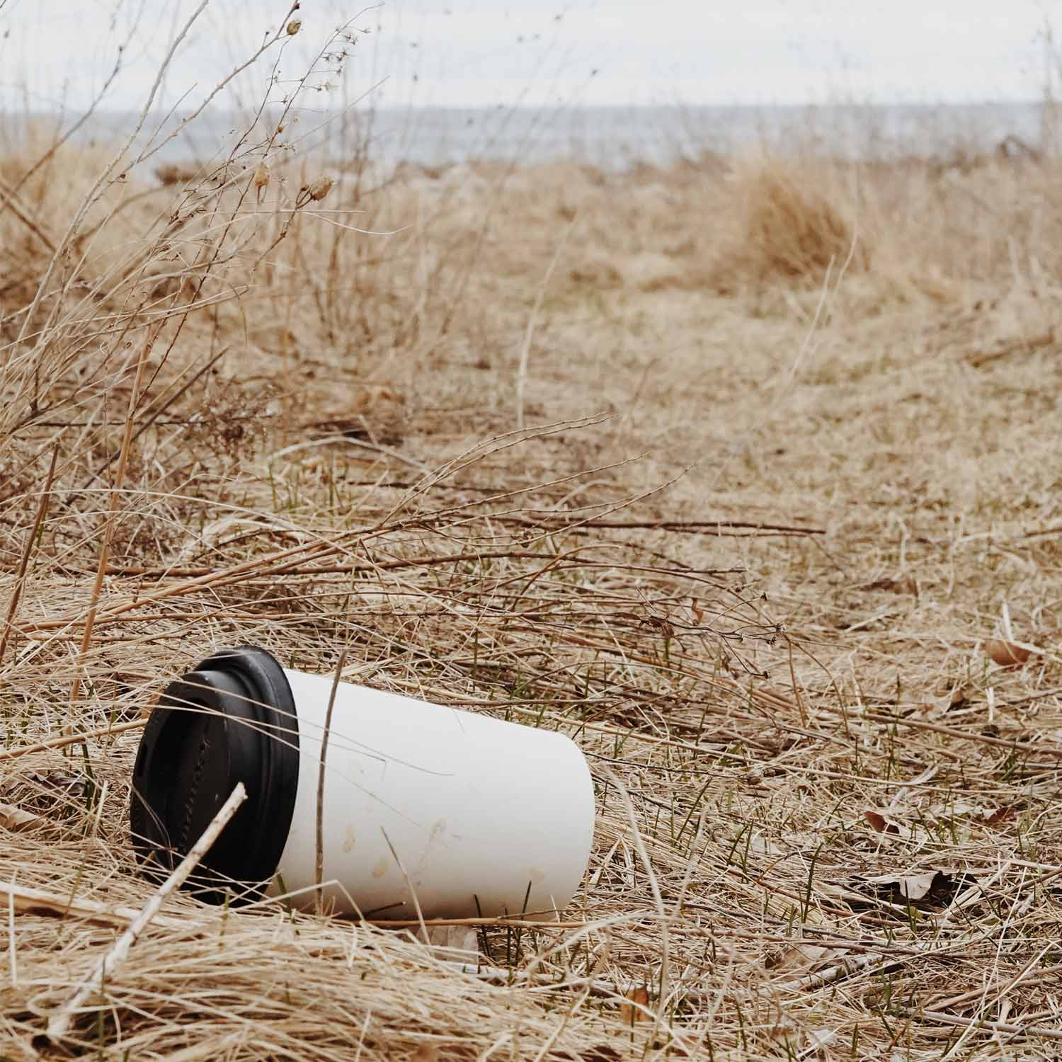 Image of coffee cup in the environment